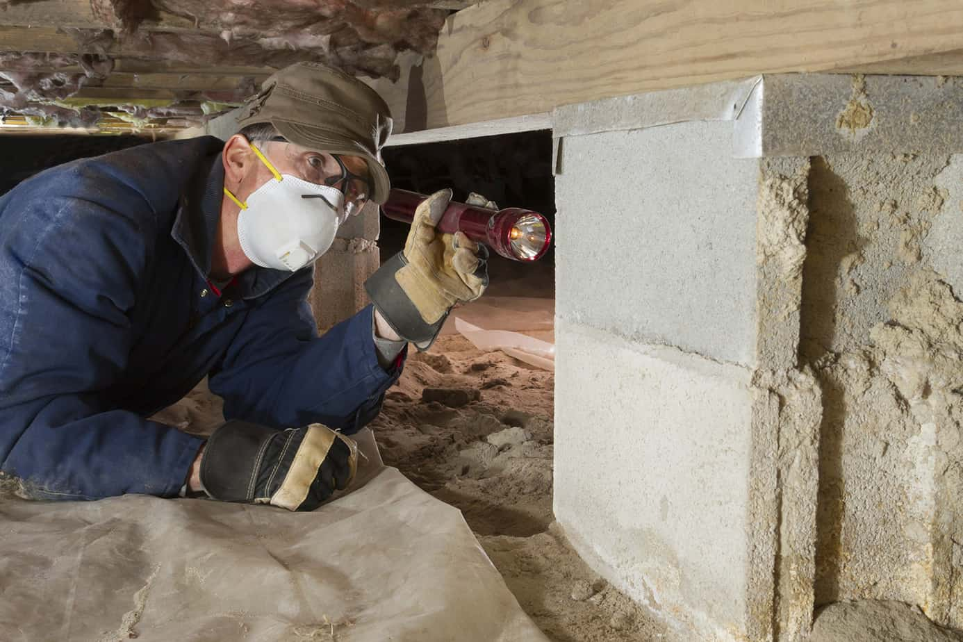 Termites Don't Stand a Chance against FullScope: Termite Inspection
