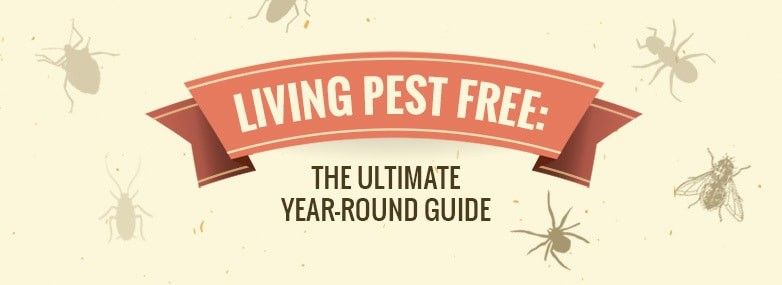 Living Pest Free: The Ultimate Year-Round Guide