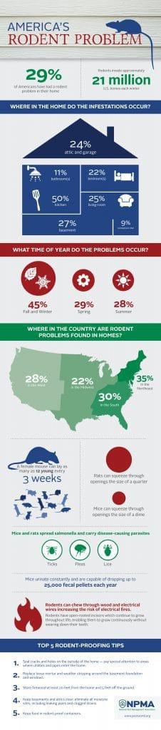 America's Rodent Problem