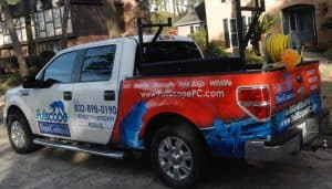 Pest Control in the Houston Area