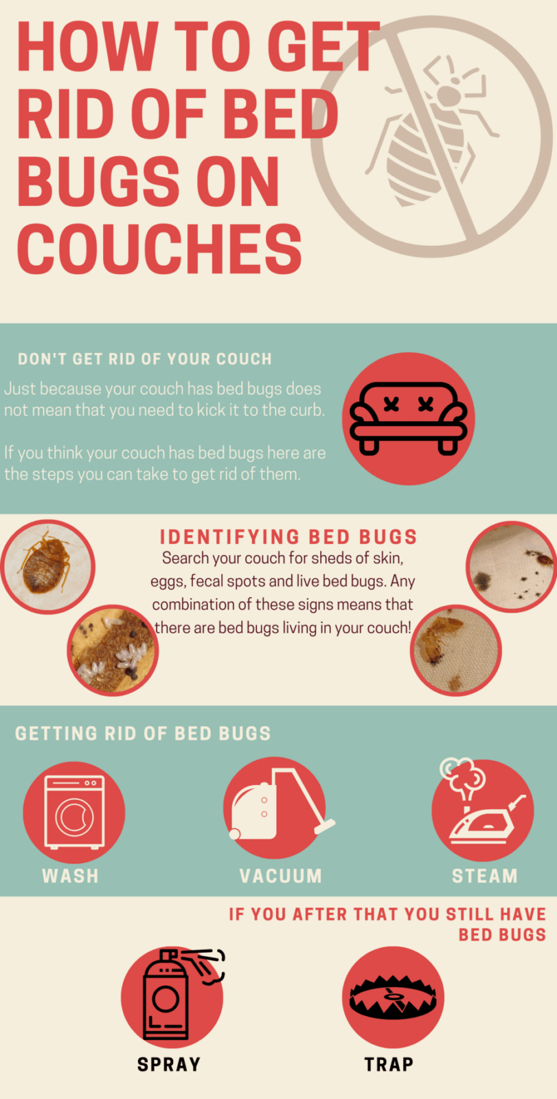 How To Remove Bed Bugs From Your Couch