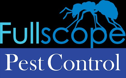 New Caney Bed Bugs Control & Treatment: Get Rid of Bed Bugs | FullScope