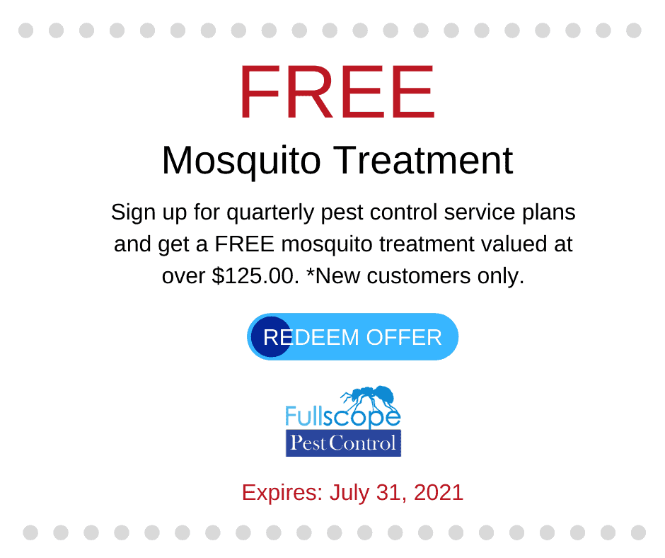 Free Mosquito Special
