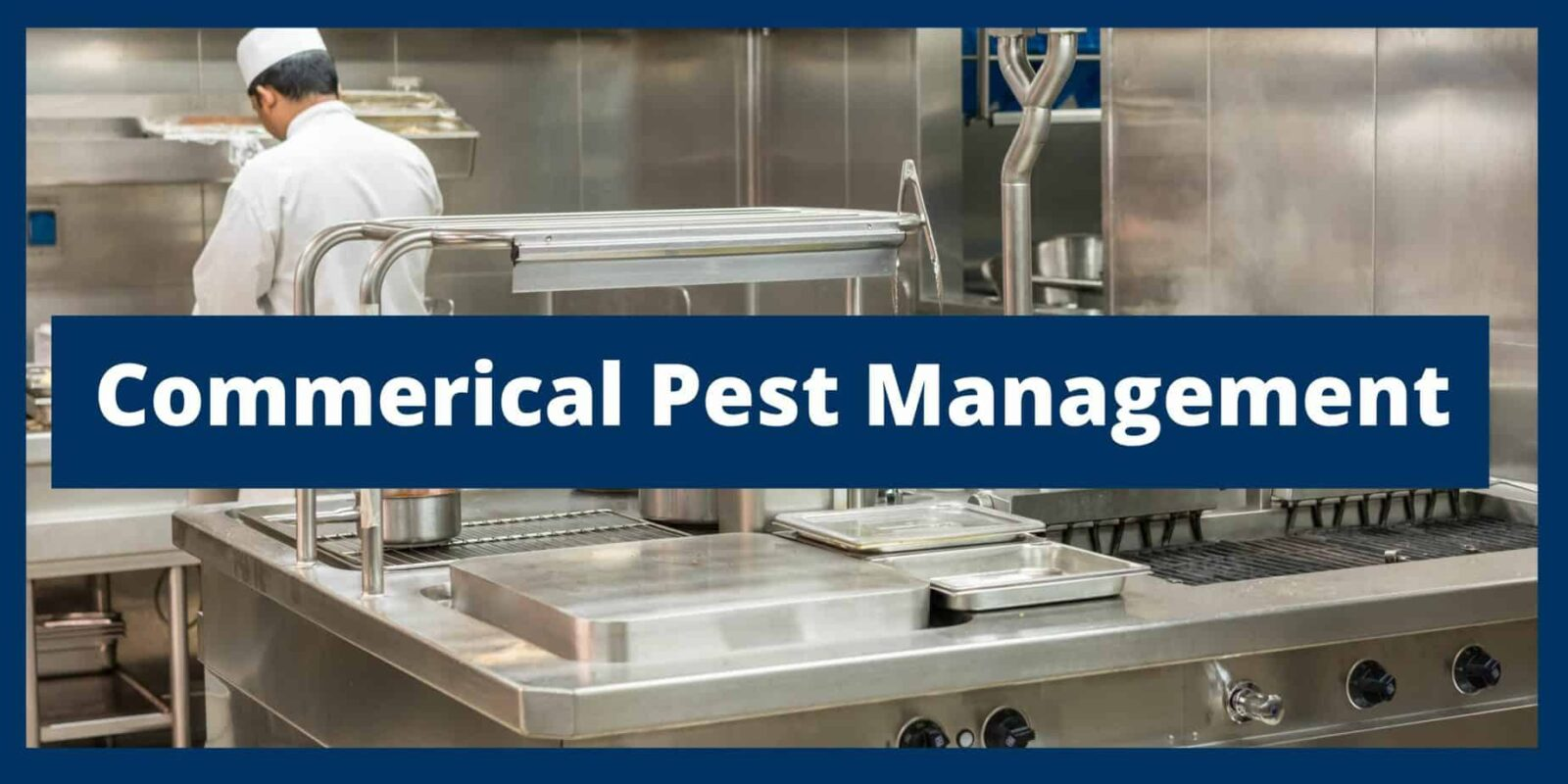New Caney Commercial Pest Control & Services | FullScope