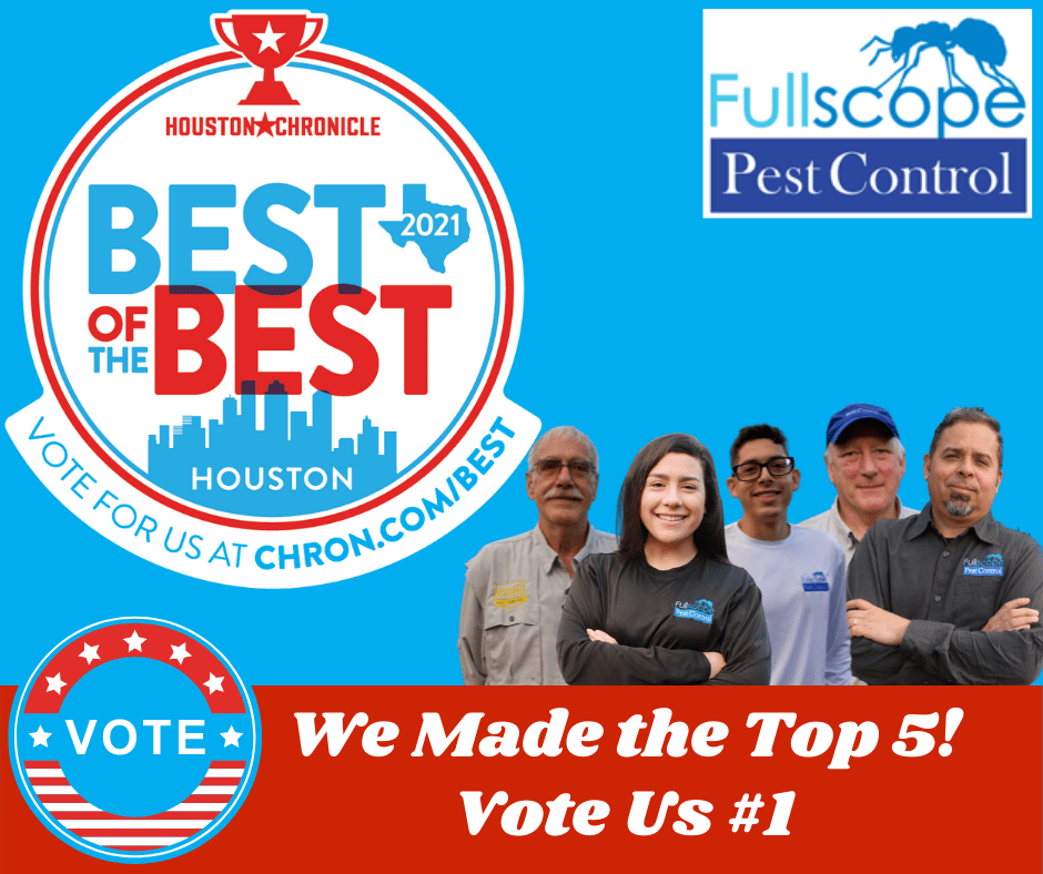 Best of Best Houston