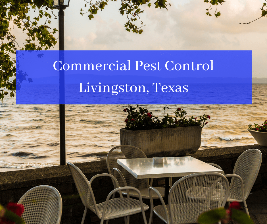 Commercial Pest Control Livingston TX