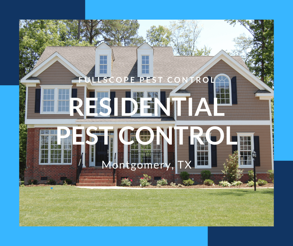 Residential Pest Control Montgomery TX